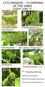 Flowering 6 years